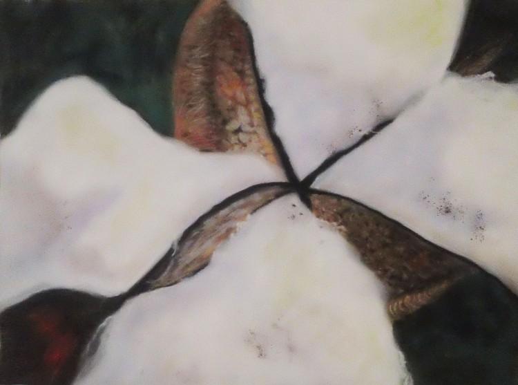 """Hard Cotton"" pastel painting 16 X 20"