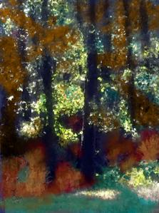 """Study: The Woods"""