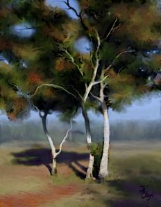 Trees Near Dumpster