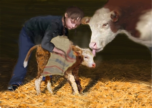 "Painting ""The Calf"""