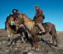 Mongolian Ponies-homely but hardy