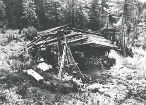Cabin in Siberia