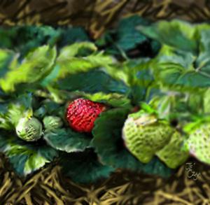 """""""First Strawberry"""" painting by Je' Czaja"""