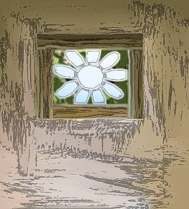 The Daisy in the Window
