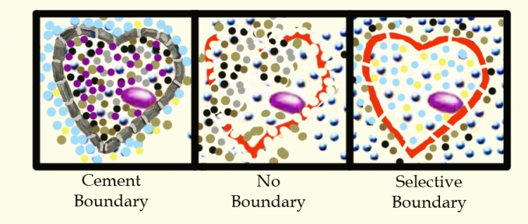 Healthy Boundaries-let in good, keep out the bad
