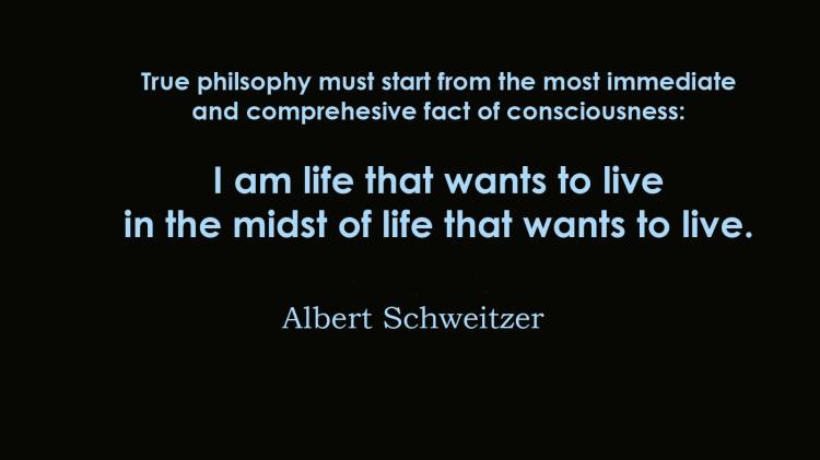 Life that wants to live Schweitzer